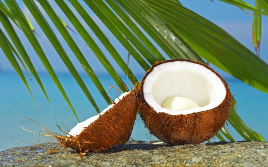 vrste kokosovog ulja