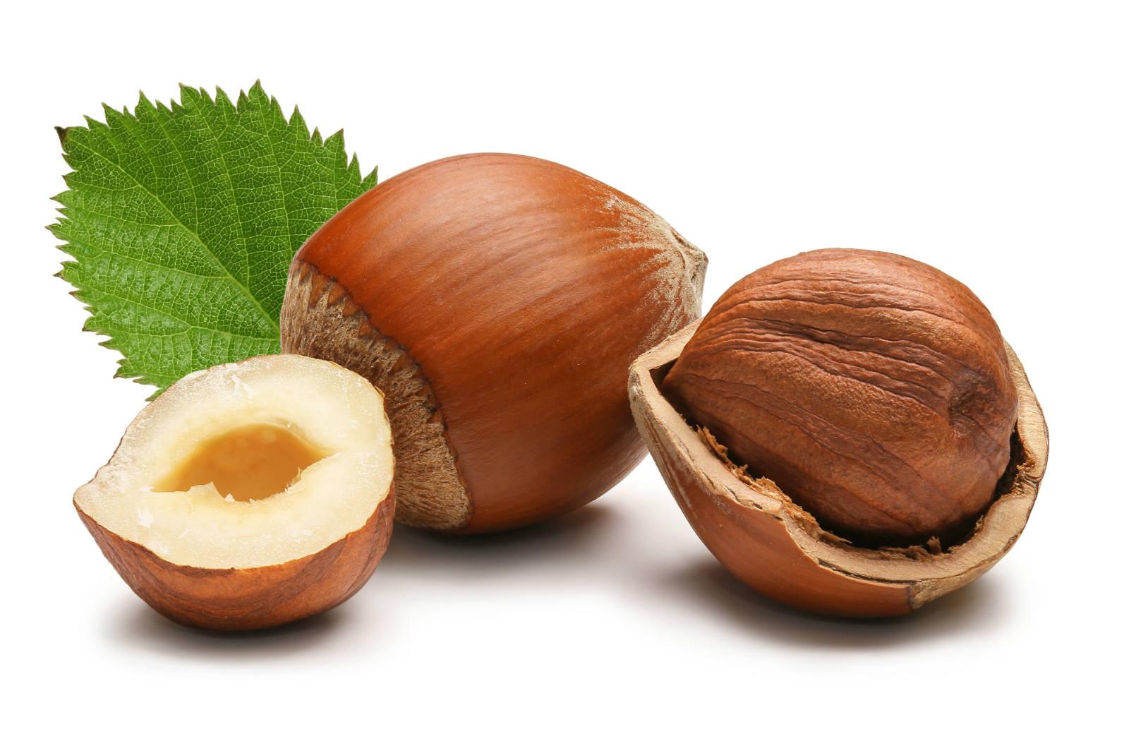 upotreba lesnikovog ulja za zdravlje