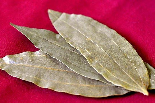 Lovorov list kao lek