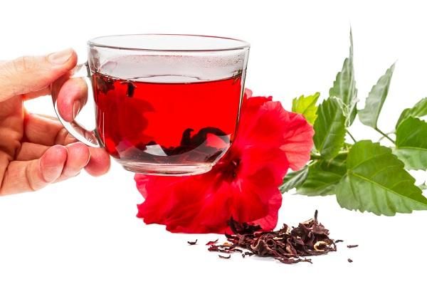 caj od hibiskusa - lekovita svojstva i priprema