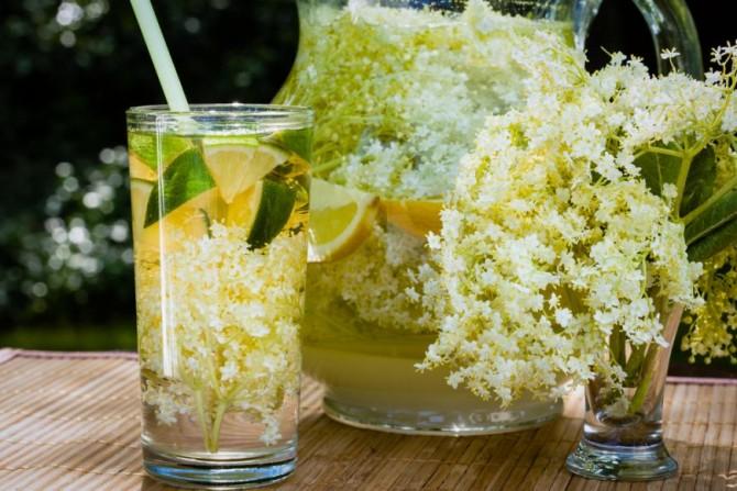 Domaći sok od zove - lekovitost i recept