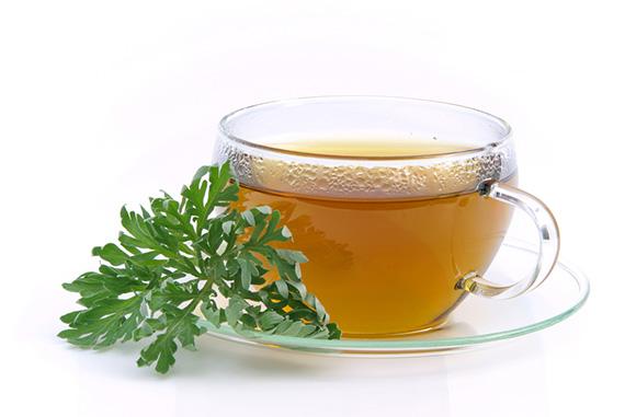 Slatki pelin - lekovita svojstva biljke i recepti za čaj